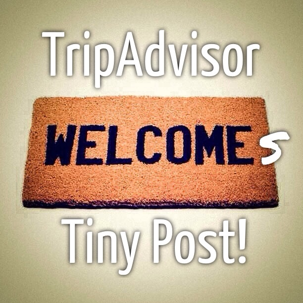 Popular Travel Site TripAdvisor Acquires Photo Captioning App Tiny Post