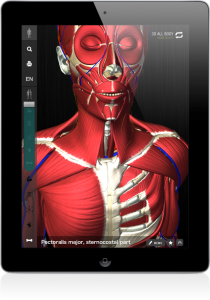 The New TeamLabBody App Shows The Human Body In 3-D Motion