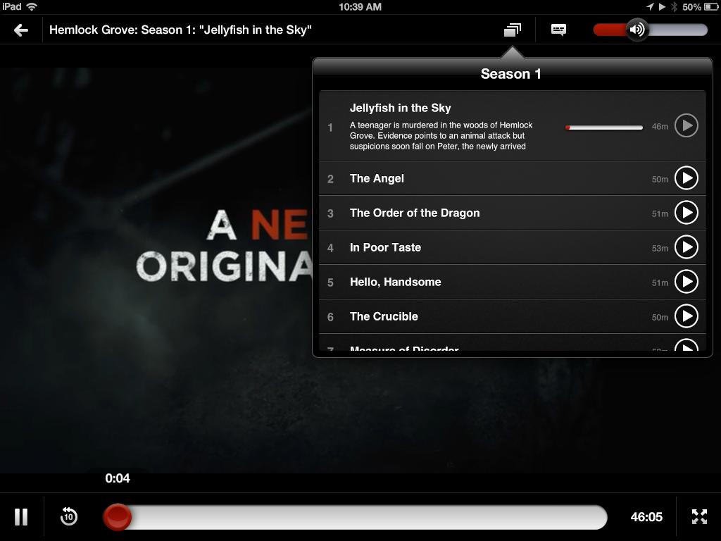 Netflix 4.0