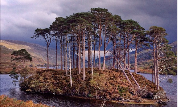It's iPhoneography: NatGeo Photographer Captures Scotland With His iPhone 5s