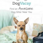 Woof Woof! Popular Home Dog Boarding App DogVacay Gets iOS 7 Redesign And More