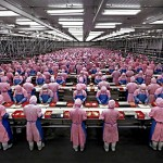 Key Apple Assembler Pegatron Announces Huge Earnings Rise