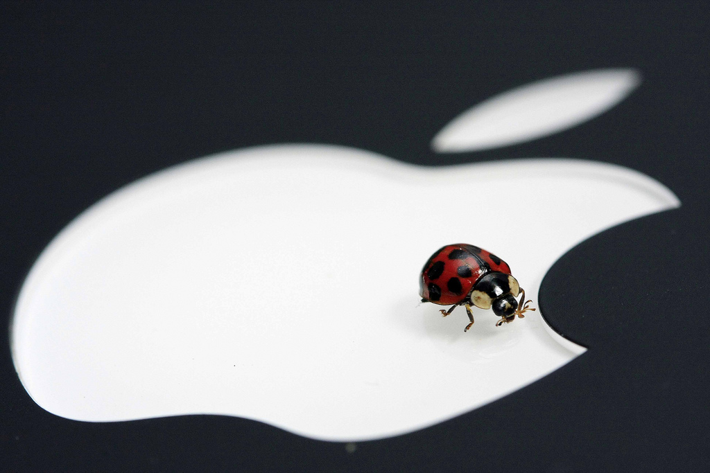 Apple Patches A Security Hole That Exposed Personal Contact Information