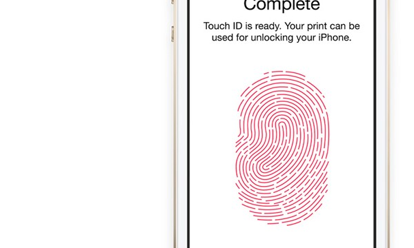 Will Apple Stores Soon Feature A Touch ID Based Payment System?