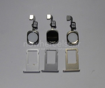 Latest 'iPhone 6' images highlight tweaked internals and gold, silver and gray design