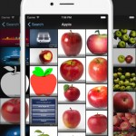 Multi-service photo search app PicTrove 2 Pro gains new features and improvements