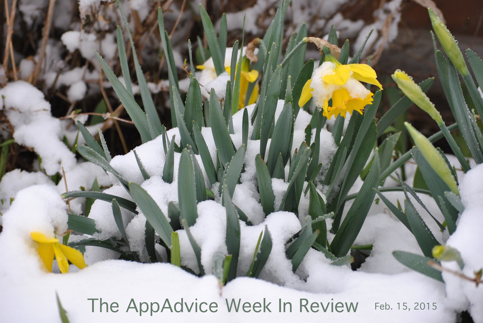 The AppAdvice week in review: Apple's springtime goodies get ready to bloom