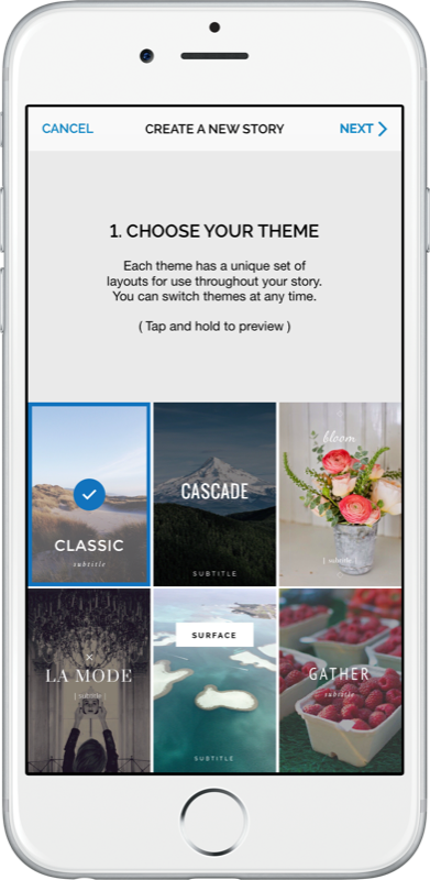 The new Steller's theme interface.