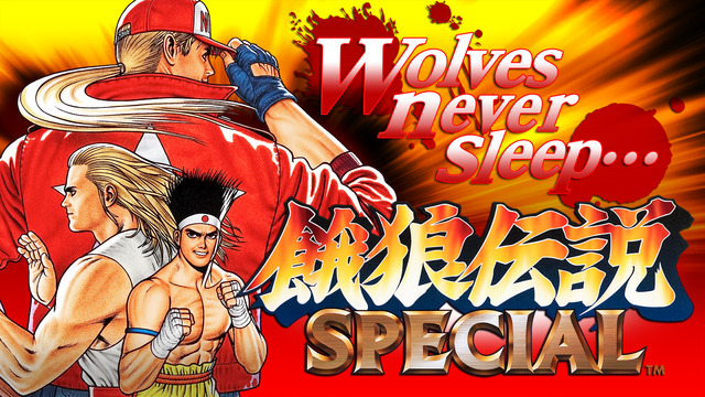 Fatal Fury Special for iOS.