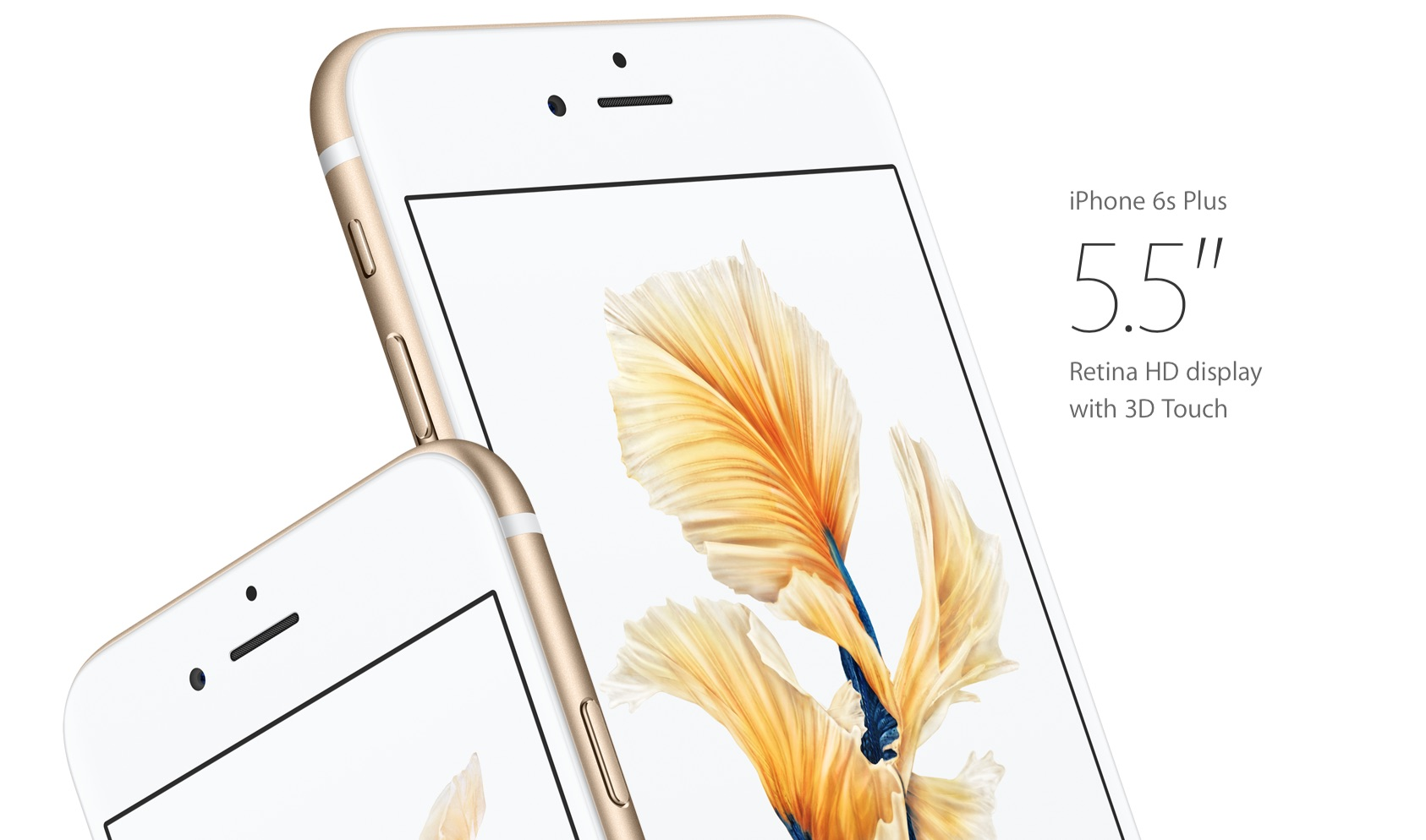 Low supplies of iPhone 6s Plus are a 'light' issue
