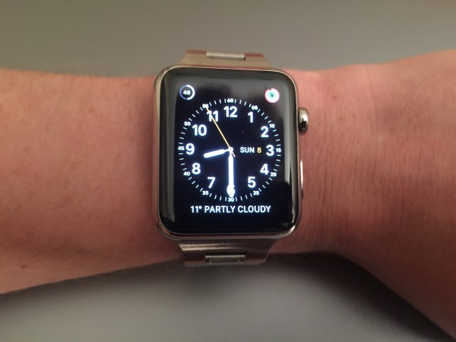 The bracelet complements the Apple Watch perfectly.