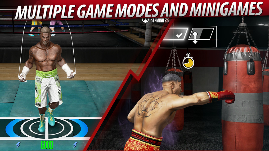 Real Boxing 2 Creed game modes
