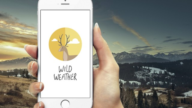 See the current conditions with lovely art in Wild Weather